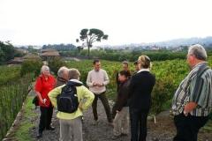grande_winetourHJGH
