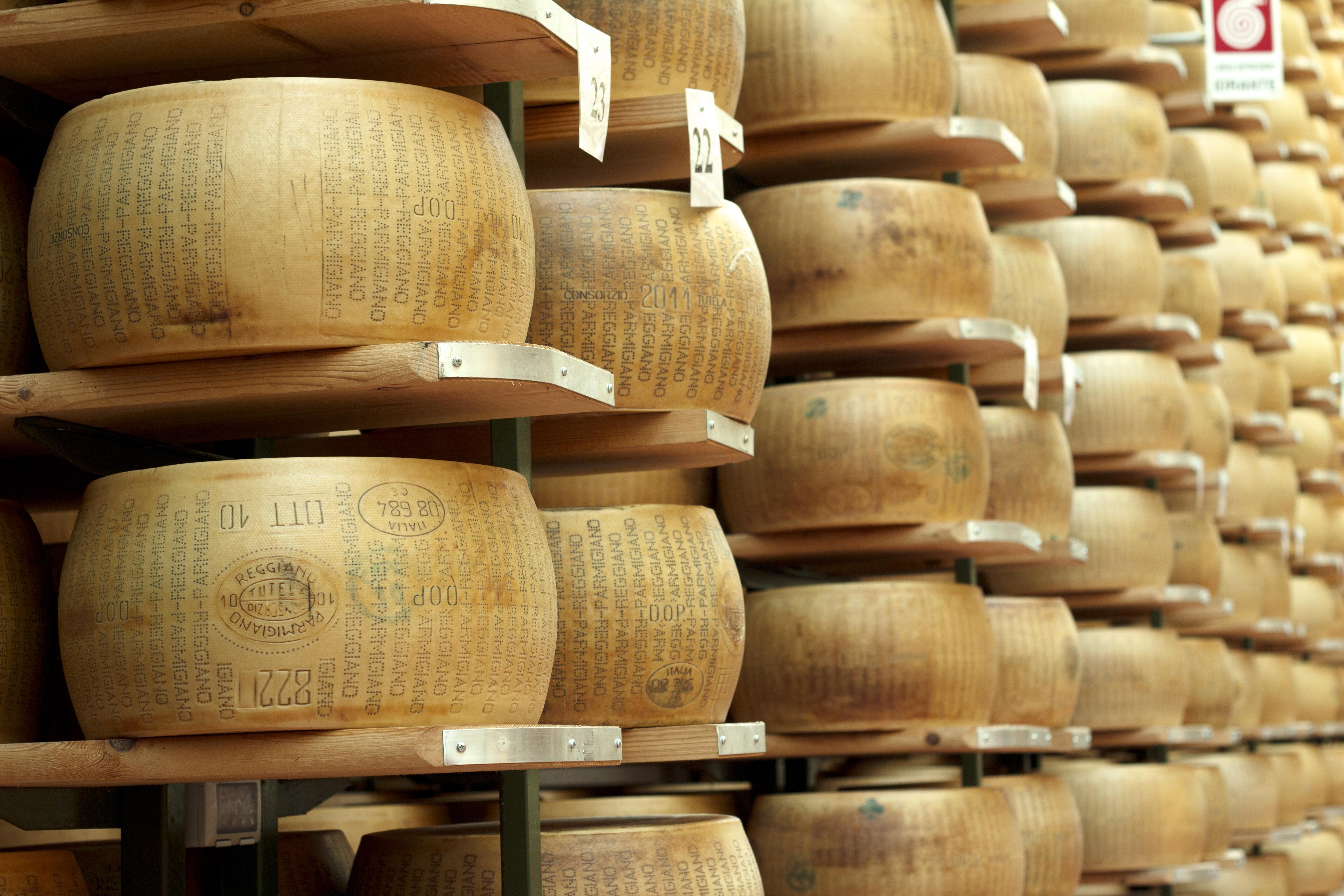 Parmigiano-Reggiano cheese wheels - parma italy