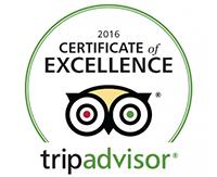 2016 trip advisor food tour winner